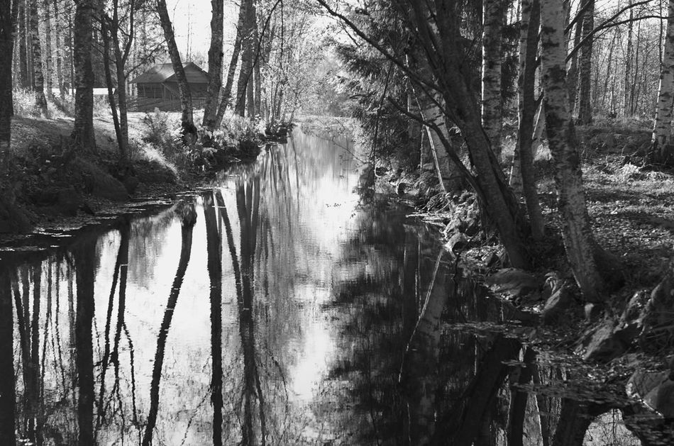 Reflections Oldstyle Countryside Finnish Landscape Visitfinland Suomi Finland♥ Monochrome Monochrome_life HeritageMuseum My Year My View