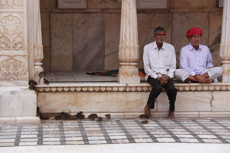 Karni Mata Temple India Karni Mata Temple Casual Clothing Lifestyles Ratsofinstagram Real People Relaxation Two People