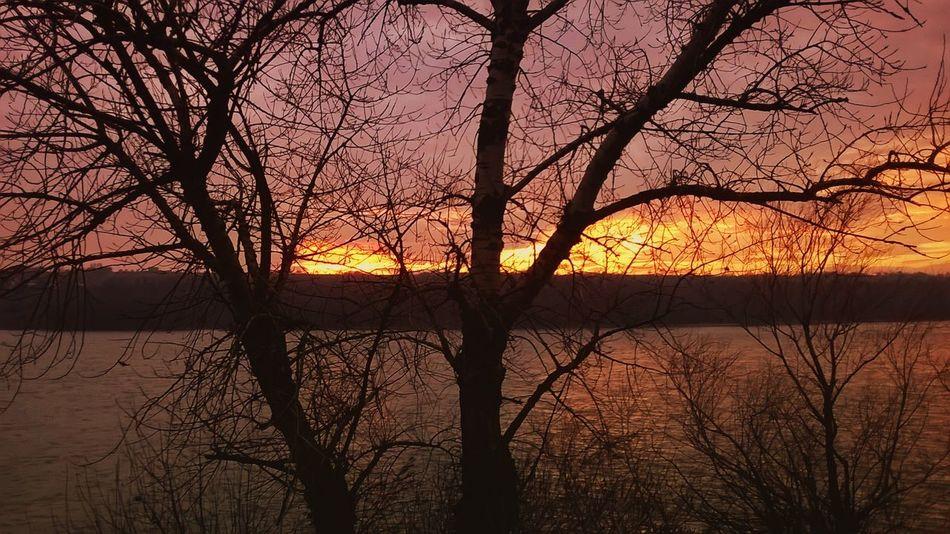 Duna Idyllic Nature No People Sun Sunset