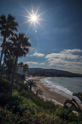 View of the sun over Main Beach, Laguna Beach, California right before the partial solar eclipse. August 21, 2017 Beach Life Coastline HDR Laguna Beach Main Beach Beach Beauty In Nature Coastal Day Eclipse Landscape Nature No People Palm Tree Partial Solar Eclipse Scenics Sea Sky Solar Eclipse Summer Tranquil Scene Tranquility Tree Water