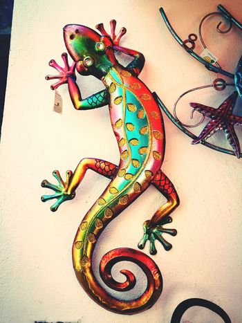 Taking Photos Fine Art Photography Metal Art Lagarto
