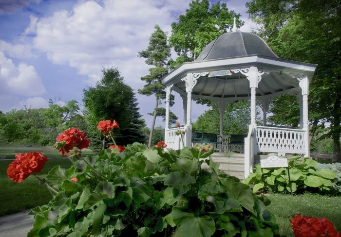 Gazebo At The Park Summertime Architecture Beauty In Nature Built Structure Cloud - Sky Day Flower Freshness Geranium Growth Leaf Nature No People Outdoors Plant Sky Tree