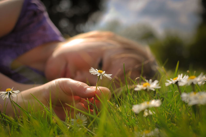day(sy)dreaming Flower Summer Nature One Person Meadow Grass Selective Focus Wildflower Outdoors People Close-up Gold Colored Beauty In Nature Child Childhood Children Childhood Memories Kid Kids Daisy Daisies Summerfeeling Summertime Summer Vibes Flowers The Great Outdoors - 2018 EyeEm Awards The Portraitist - 2018 EyeEm Awards