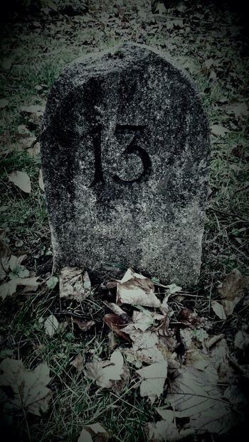 No People Old Cemetery And Botanik Old Cemetary Old Cemetery Death And Life Death Danger Cemetery Fridaythe13th Friday The 13th Friday 13 Friday 13th Halloween Grave Horror Bad Luck? 13