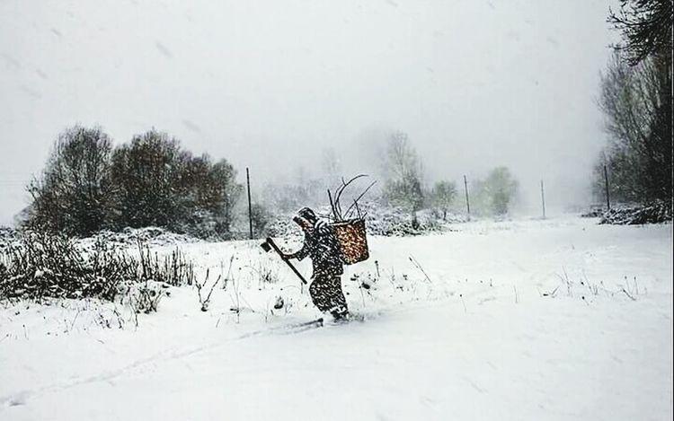 Cold Winter ❄⛄ Snow ❄ Hi! Hello World Taking Photos