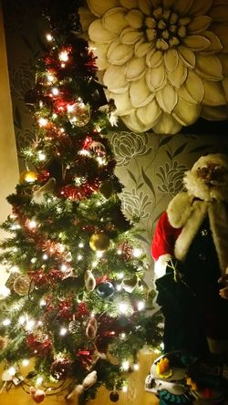 Festive Theme Festive Decor Christmas Lights Christmas Decorations Christmas Lights Baubles Tinsel  Christmas Tree Decorations Festive Season Best Christmas Lights Santa White Beard Spectacles Father Christmas Santa Claus