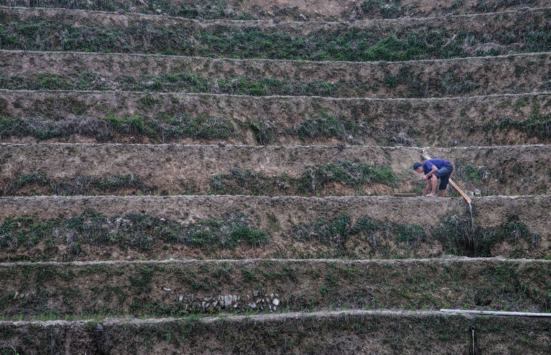 High angle view of man standing on farm