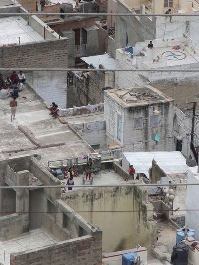 Children India Jodhpur Kite RoofLife Child Independence Day Jodhpur Rajasthan Roof Top