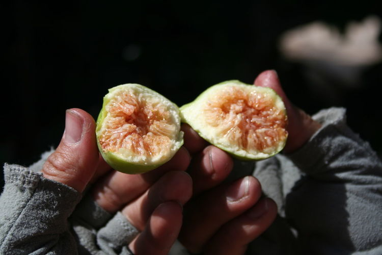Close-up of hand holding halved fig