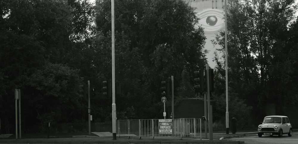 The Pink Eye building in Warrington, peeping through trees The Watcher Eye4photography  Buildings Monochrome Mini Check This Out Shades Of Grey