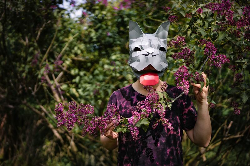 Midsection of man wearing french bulldog origami mask holding purple lilac flowering plants