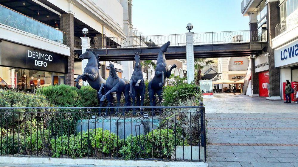 Samsun City Heykel Sculpture Avm Benimkadrajim Benimgözümden