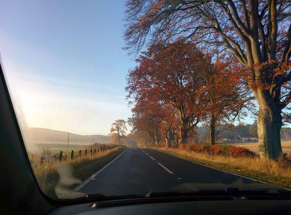 Traveling Nofilter Noedit Ontheroad Scotland Earlymorningdrive Beautifulcolors BeautifulSunRise Beautiful Nature Wakeywakey