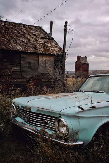 Alberta Vintage