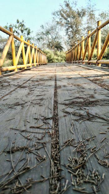 Nature MrRobPhotography Bridge - Man Made Structure Wodden Bridge DamanForestGarden Daman