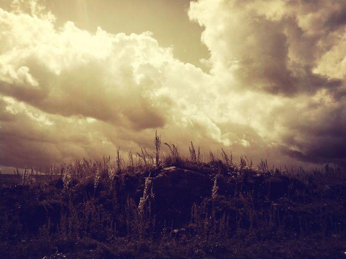 The Environmentalist – 2014 EyeEm Awards Mount Arakadz Landscape EyeEm Nature Lover