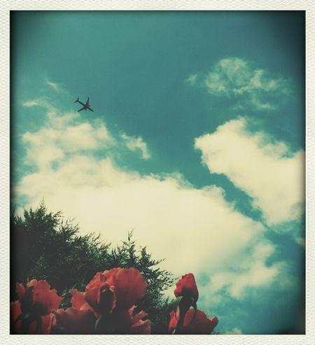 Sky Getting Inspired Wonderful Life