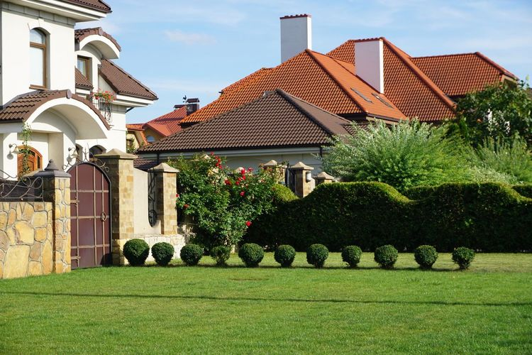 Houses and plants in lawn