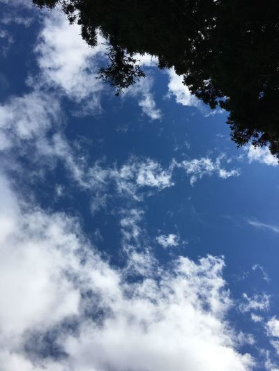 Low angle view of blue sky on sunny day
