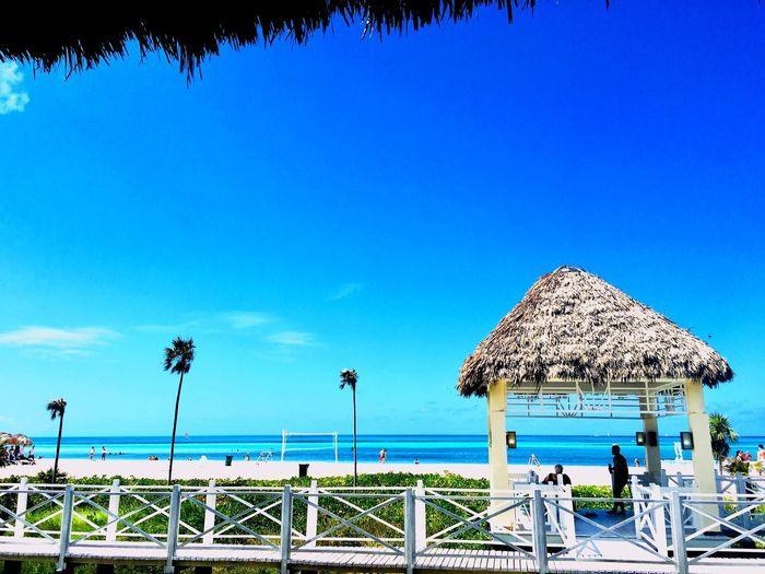 Cayo Coco Resort Holiday Cuba Cayo Coco Cuba Sky Blue Nature Copy Space Clear Sky Tree Day Plant Land Beach Outdoors Sunlight
