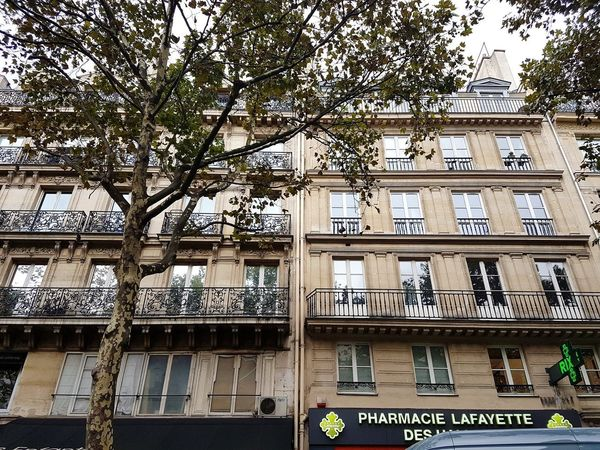 Paris Building Balcony Tree Day Text Architecture Built Structure Outdoors Low Angle View Window