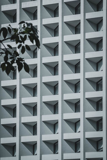 Pattern Full Frame No People Architecture Built Structure Backgrounds Day Close-up White Color Wall - Building Feature Nature Outdoors Repetition Design Building Exterior Shape Plant In A Row Building Window My Best Photo