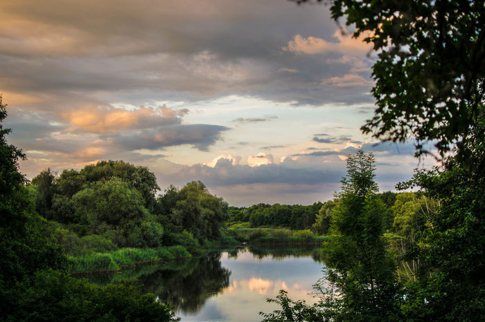 Frankfurt Beauty In Nature Cloud - Sky Day Enkheim Frankfurtliebe Green Color Growth Lake Nature No People Outdoors Plant Reflection Scenics Sky Tranquil Scene Tranquility Tree Water