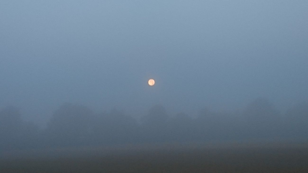 Nature Moon Foggy Morning
