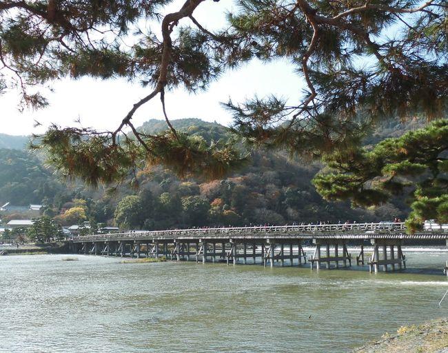 風景 川 日本 嵐山 京都