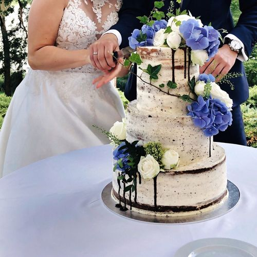 Wedding Cake Cutting The Cake Newly Weds Flower Wedding Bride Flowering Plant Newlywed Life Events Plant Wedding Ceremony Ceremony Celebration Event