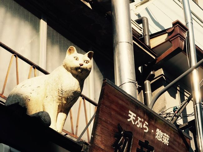 Tokyo Japan Japan Photography Cat Low Angle View No People One Animal Mammal Statue Day 東京 谷中 猫