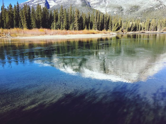 A view from the trails behind our resort at Dead Man's Flats in Alberta. Just BREATHE TAKING! Beauty In Nature Gods Creation Mountain View Clean Water Beautiful Fall Colours In The Fall Outdoors Alberta Canada Banff National Park  Vacations Reflection Nature Tranquil Scene