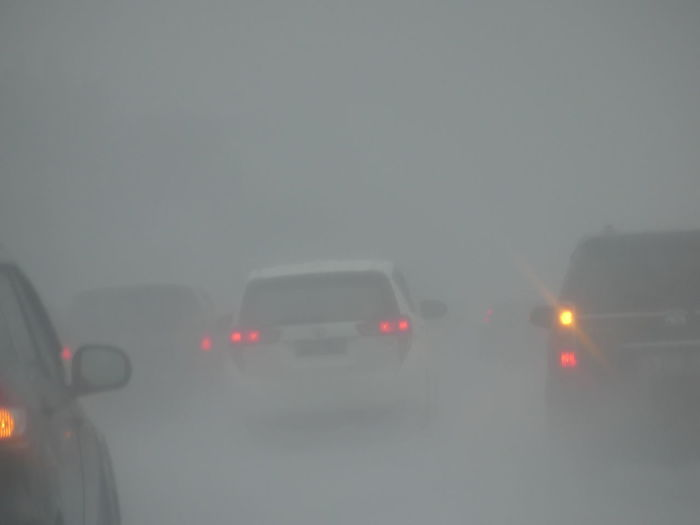 Cars and torrential rain Heavy Rains Blurry Car Fog Illuminated Land Vehicle Motion No People on the move Outdoors Rain Tail Light Torrential Rain Wet