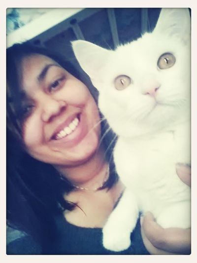 This is Whiteboy. I sleep w him every night I'm home. He's my bestfriend. :) ♡ Bestfriend My Cat My Bestfriend Cat