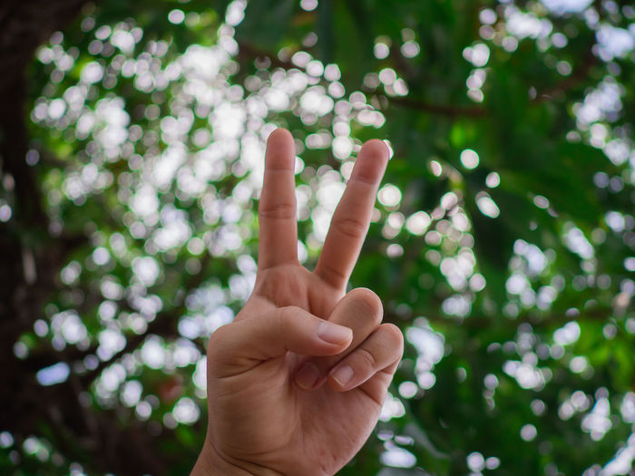 Cropped hand of person gesturing against tree