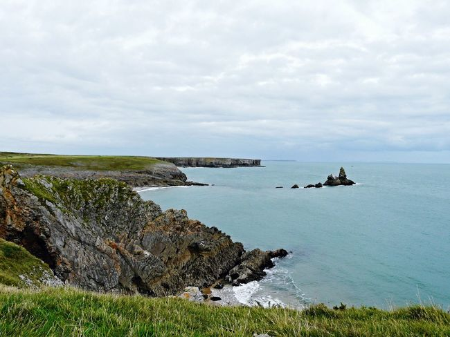 Pembrokeshire Coast Summer Memories 🌄 Nature On Your Doorstep Relaxing Taking Photos Check This Out