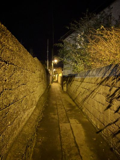 Night The Way Forward Illuminated Outdoors Nature No People Lane Laneway Alley Alleyway Alleyways Raheny Like4like Cement
