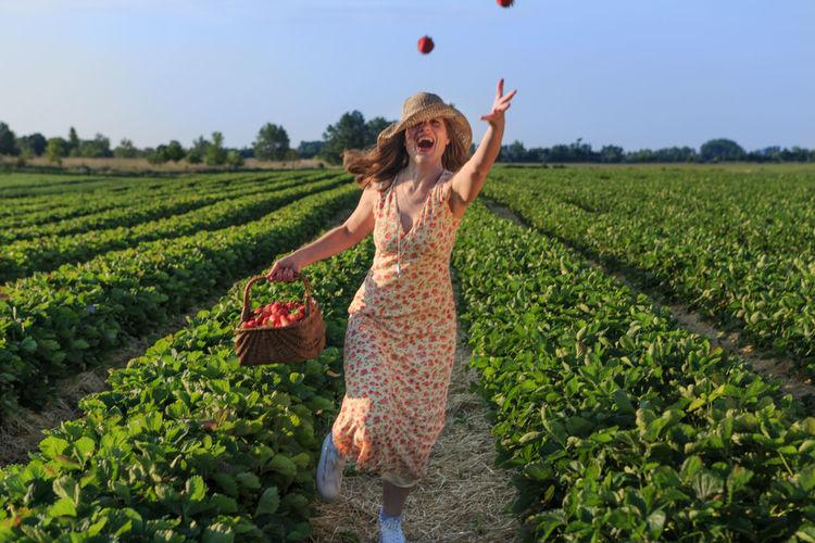 Having fun during strawberry picking Dunajska Luzna Slovakia Fruit Landscape Spring young woman Field