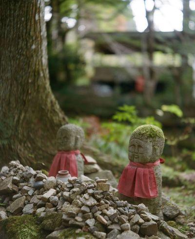 Jizo Jizo Film Photography Lendscapephotography 120Film 京都 Filmcamera
