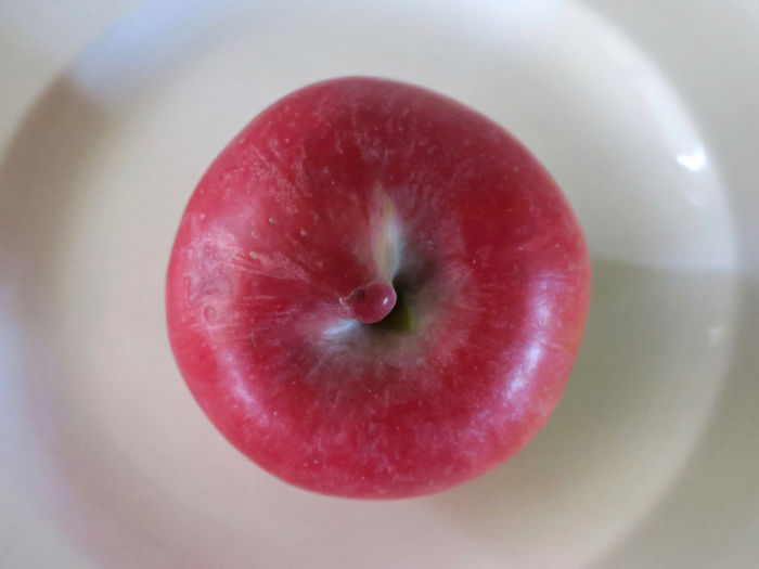 red apple Healthy Eating Wellbeing Fruit Food Food And Drink Close-up Indoors  Freshness Directly Above Red Apple - Fruit No People Focus On Foreground Single Object Ripe Plate Raw Food Juicy High Angle View Apple