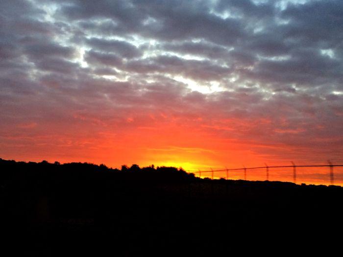 Autumn sunrise Sunrise Sunrise_sunsets_aroundworld Sunrise_Collection Sunrises Morning Light Morning Morning Sky Silhouette Beauty In Nature Nature Orange Color Scenics Tranquil Scene Sky Tranquility Cloud - Sky No People Landscape Sun Outdoors Tree Day