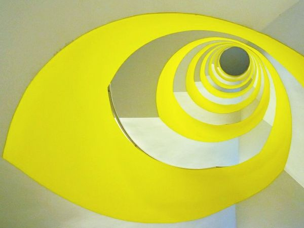 Yellow spiral... Lemon By Motorola Photography Check This Out Getting Inspired
