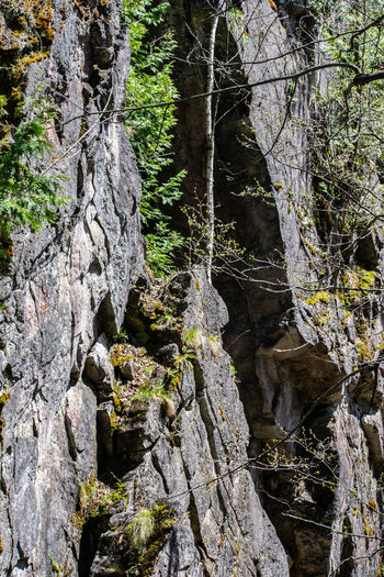 Nature Nature Photography Nikon Plants Rock Rock Face Rock Formation Tranquility Trees Beauty In Nature Forest Landscape Landscape #Nature #photography Landscape_photography Nikon D3400 Nikonphotographer Nikonphotography No People Outdoors Rock Formation Nature Natural Creation Scenics - Nature Scerenity