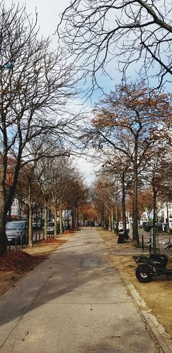 Road amidst bare trees in city against clear sky