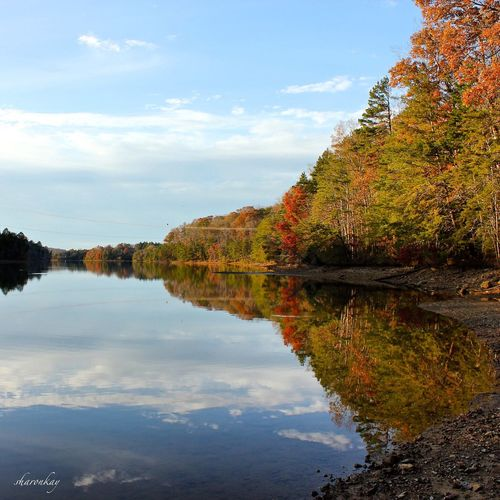Nature Autumn Colors Tennessee Water Reflections Peace And Quiet Hiking Trail Eye Em Nature Lover Learn & Shoot: Balancing Elements The Great Outdoors - 2016 EyeEm Awards