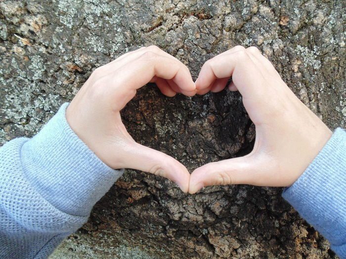 Close-up of hands holding heart shape rock