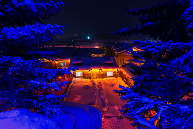 High angle view of illuminated trees and buildings at night