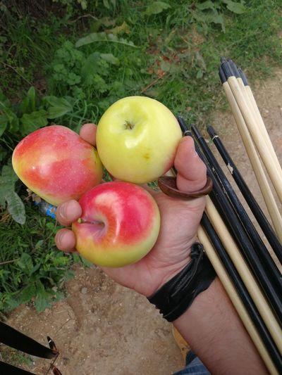 Ok atmayı özledim, güzel elmaları da.. Fruit Perspectives On Nature Be. Ready. Arrow Gelenekseltürkokçuluğu Huawei Leica Huawei Mate 9 EyeEm Outdoors