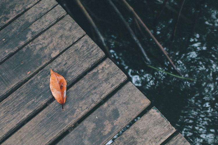 High angle view of autumn leaves on wooden table