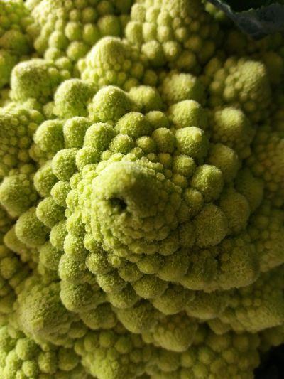 Full frame shot of green vegetable